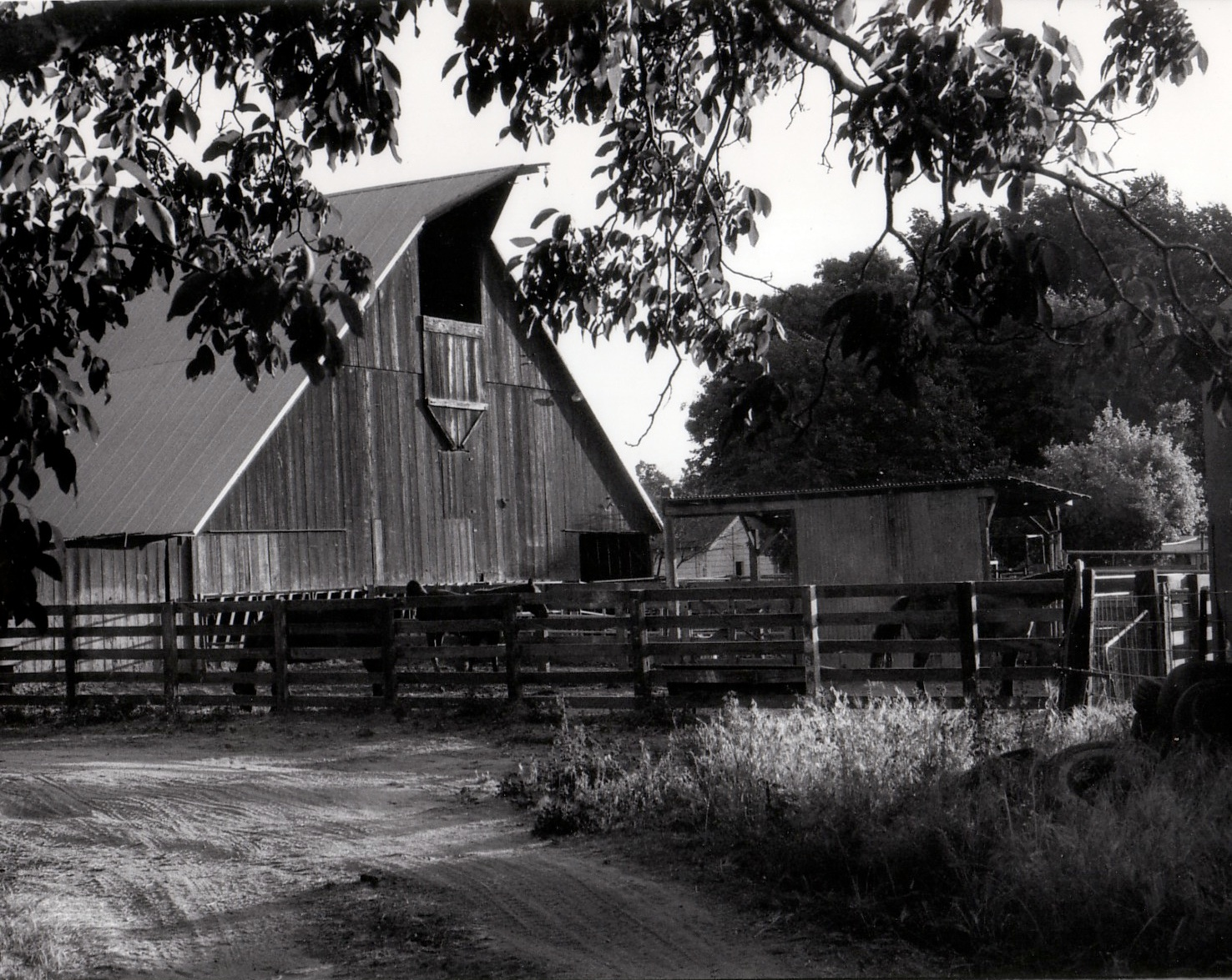 Closeup Barn in Black and White