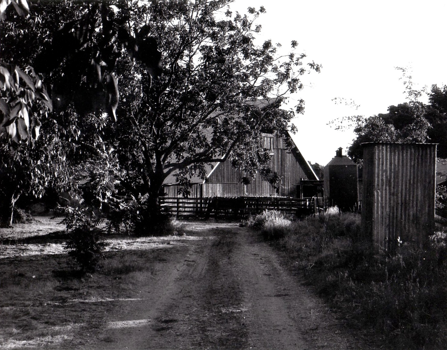 Farther Away Barn in Black and White