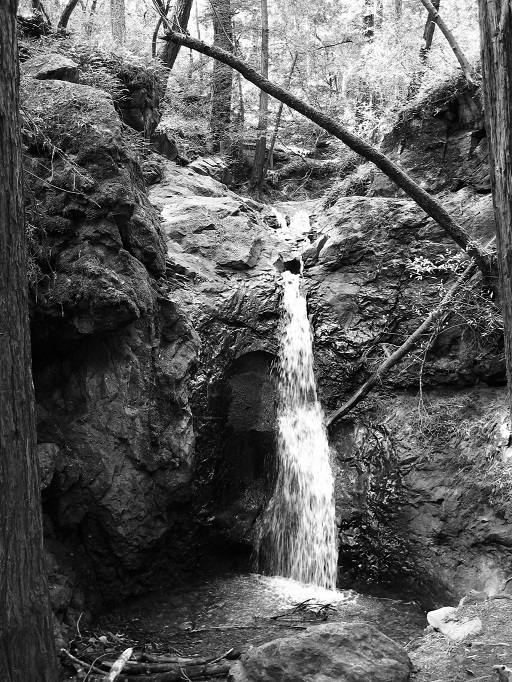 Marin Waterfall In Black and White